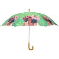 Honden-paraplu