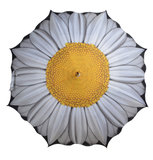 Paraplu met Madelief Print_