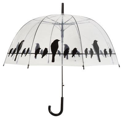 Transparante paraplu - Vogels
