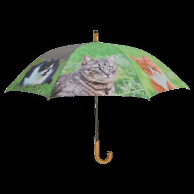 Paraplu poezen