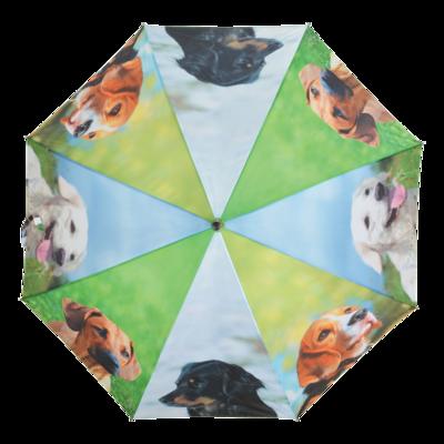 Paraplu honden