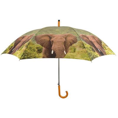 Olifant Paraplu