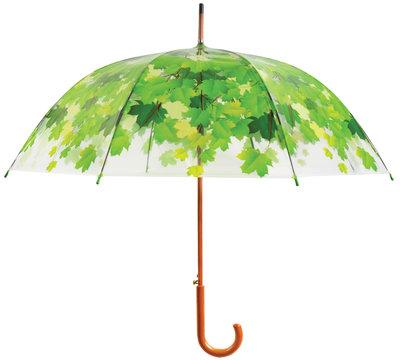 Transparante paraplu - Boom