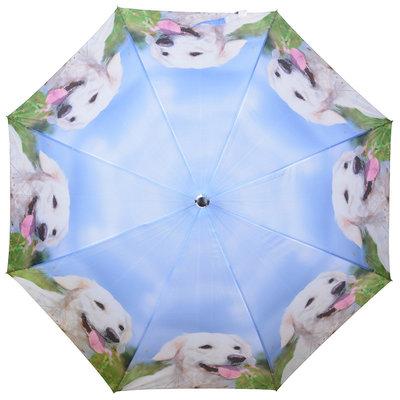 Honden Paraplu - Wit