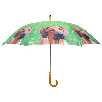 Honden Paraplu - Bruin