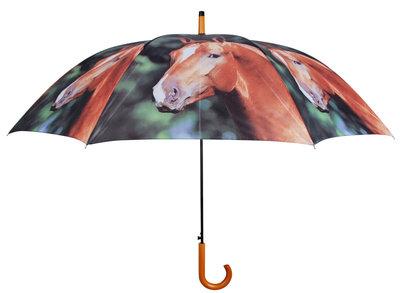 Paarden Paraplu