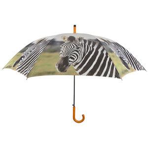 Zebra Paraplu