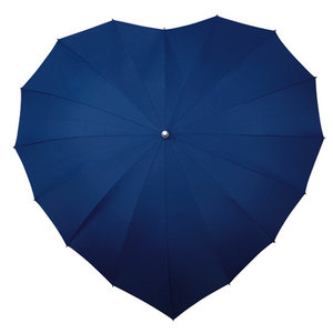 donkerblauwe hartparaplu