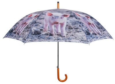 Biggetjes Paraplu